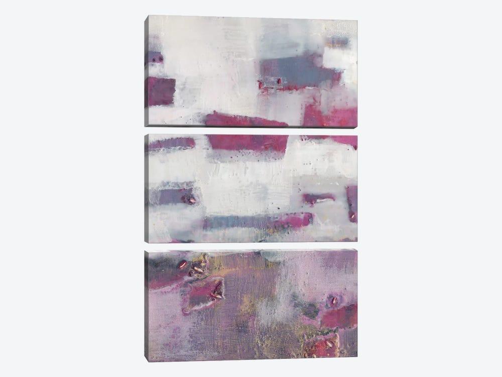 Tilde V by Sue Jachimiec 3-piece Canvas Art Print