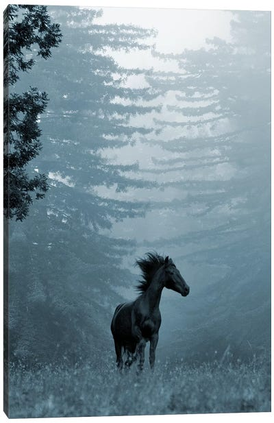 Horse in the Trees I Canvas Art Print