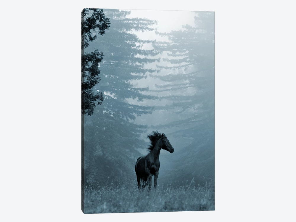 Horse in the Trees I by Susan Friedman 1-piece Canvas Print