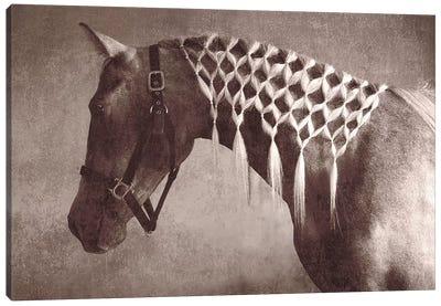 Weave Canvas Art Print