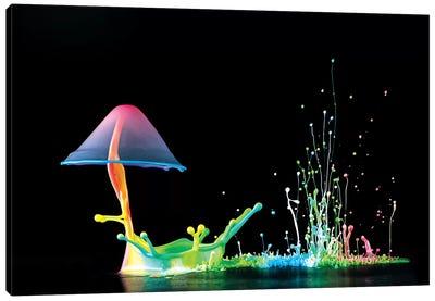 Symphony Of Colors Canvas Art Print