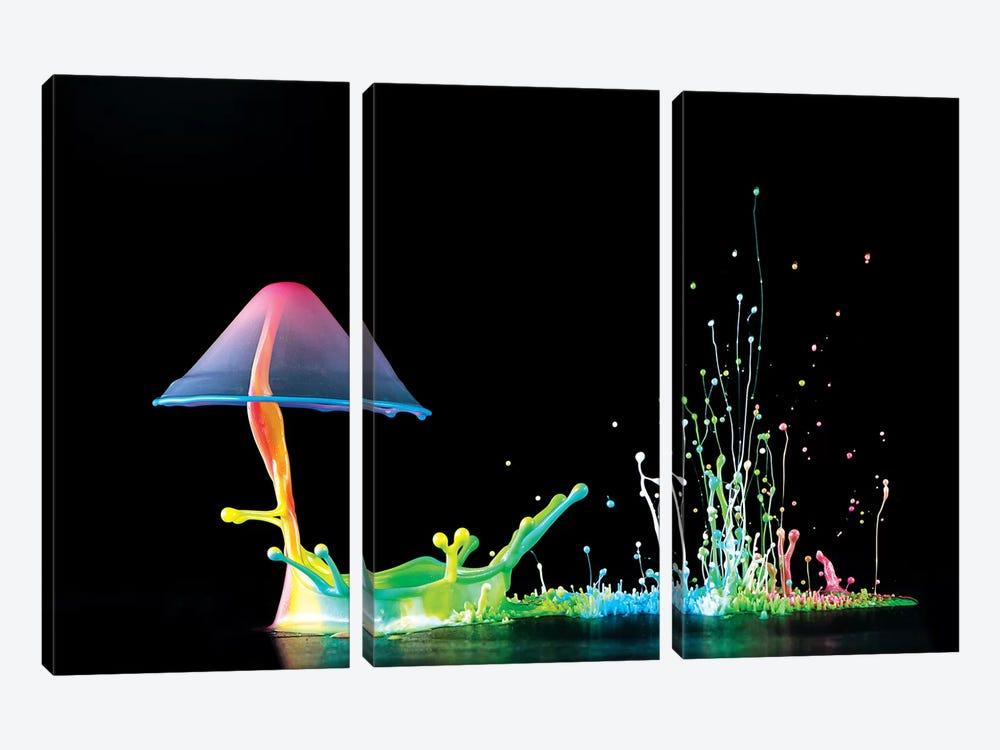 Symphony Of Colors by Suwandi Lim 3-piece Canvas Art Print