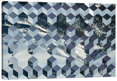 Still Winter Canvas Art Print