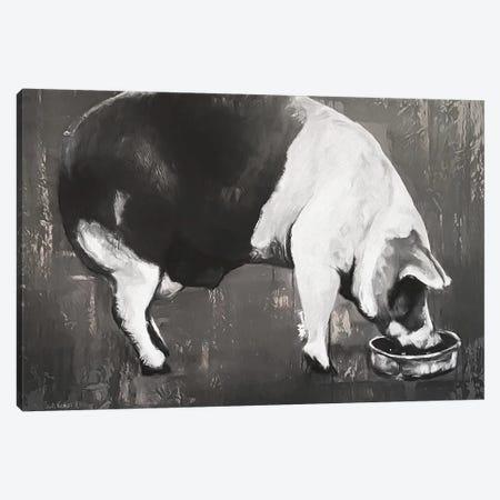 This Little Piggy  Canvas Print #SUR5} by Suzy Redmond Canvas Print