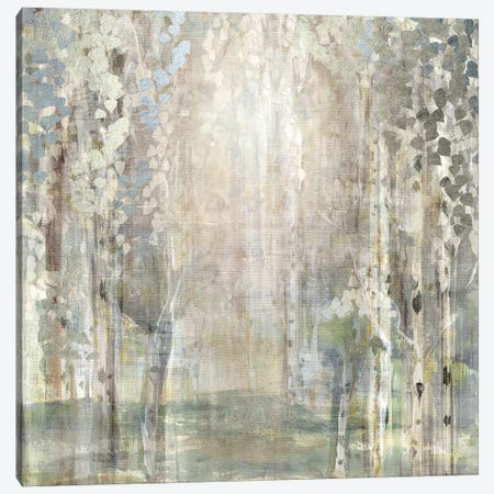 Birch Wood Clearing Canvas Print #SUS149} by Susan Jill Canvas Art