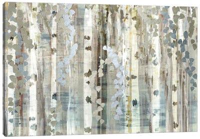 Birch Wood Meadow Canvas Art Print