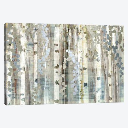 Birch Wood Meadow Canvas Print #SUS150} by Susan Jill Canvas Art Print