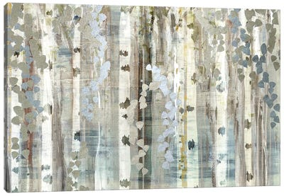 Birch Wood Meadow Canvas Art Print