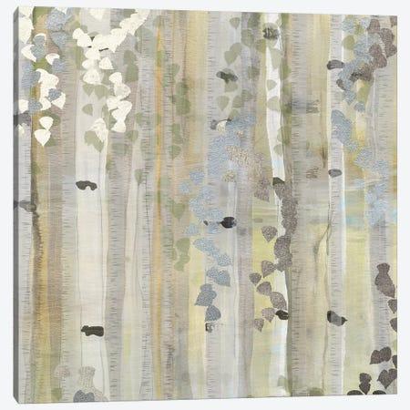 Spring Birch Grove II Canvas Print #SUS163} by Susan Jill Canvas Wall Art
