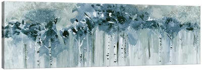 Blue Birch Morning Canvas Art Print