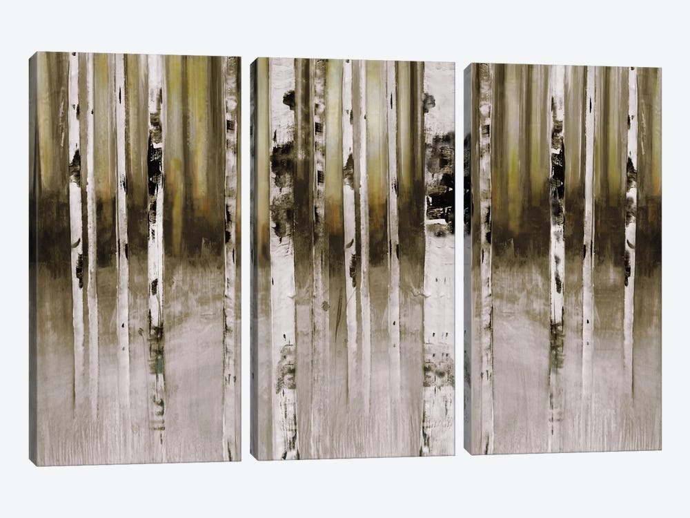 Fern Creek by Susan Jill 3-piece Canvas Wall Art