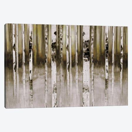 Fern Creek Canvas Print #SUS1} by Susan Jill Canvas Print