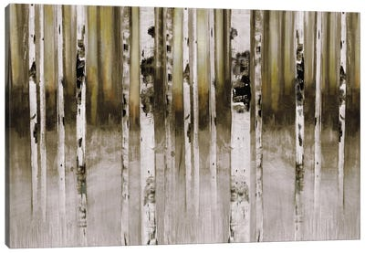 Fern Creek Canvas Art Print