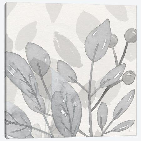 Shadow Leaves I Canvas Print #SUS244} by Susan Jill Canvas Wall Art