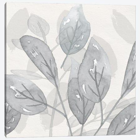 Shadow Leaves II Canvas Print #SUS245} by Susan Jill Canvas Art