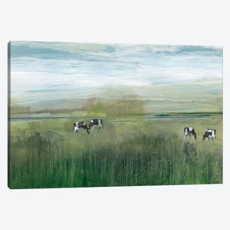 Grazing In Shandelee Canvas Print #SUS56} by Susan Jill Canvas Art Print