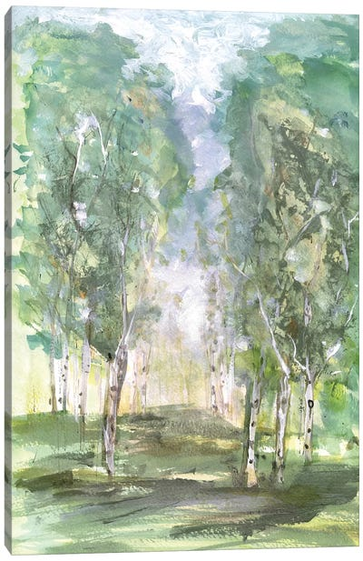 Birch Meadow Canvas Art Print