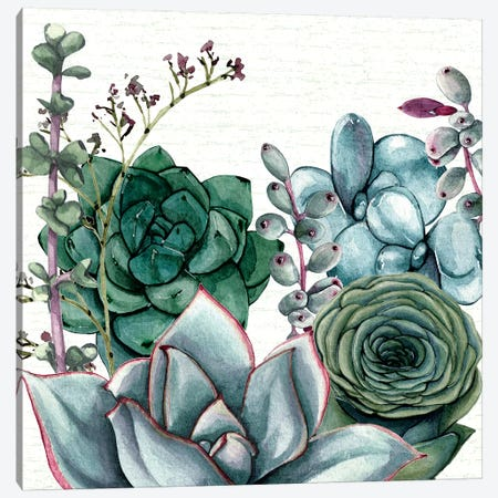 Succulent Garden I Canvas Print #SUS94} by Susan Jill Canvas Print