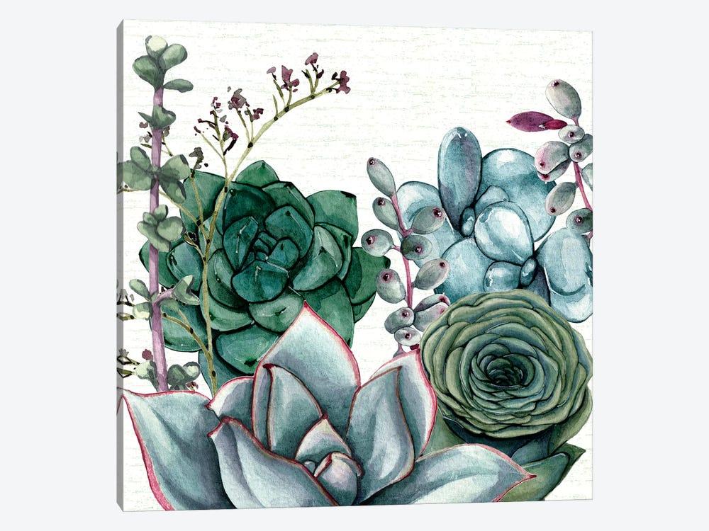 Succulent Garden I by Susan Jill 1-piece Canvas Art