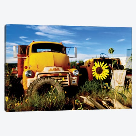 Yellow Daisy With Truck Canvas Print #SUV107} by Susan Vizvary Canvas Art Print
