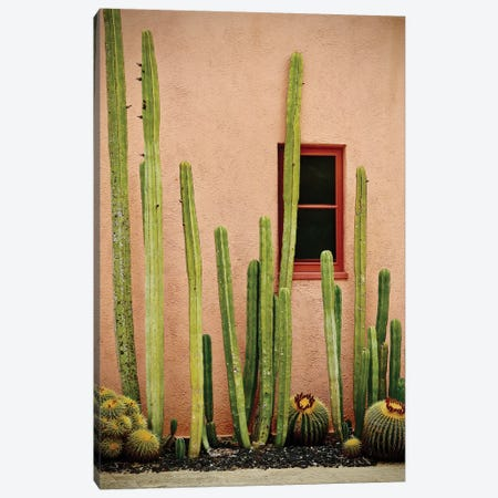 Adobe Cactus 3-Piece Canvas #SUV112} by Susan Vizvary Canvas Print