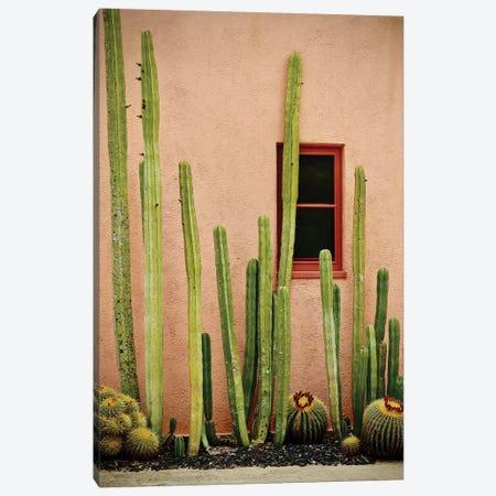 Adobe Cactus Canvas Print #SUV112} by Susan Vizvary Canvas Print