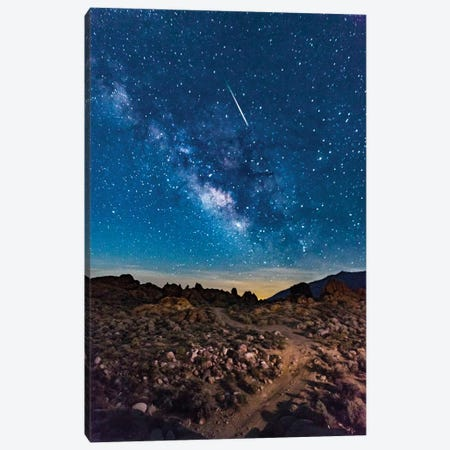 Shooting Star II Canvas Print #SUV154} by Susan Vizvary Canvas Art