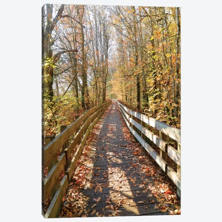 Autumn On The Boardwalk Canvas Print #SUV170} by Susan Vizvary Canvas Art Print
