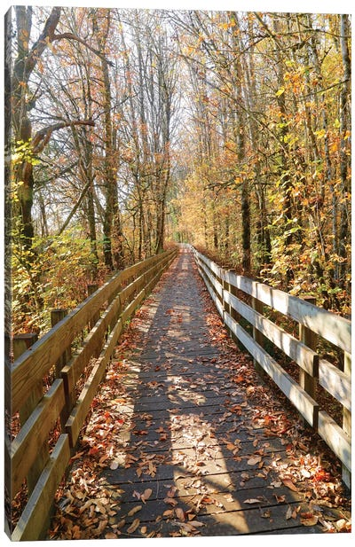 Autumn On The Boardwalk Canvas Art Print