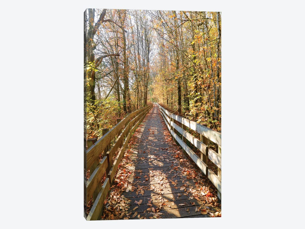 Autumn On The Boardwalk by Susan Vizvary 1-piece Canvas Wall Art