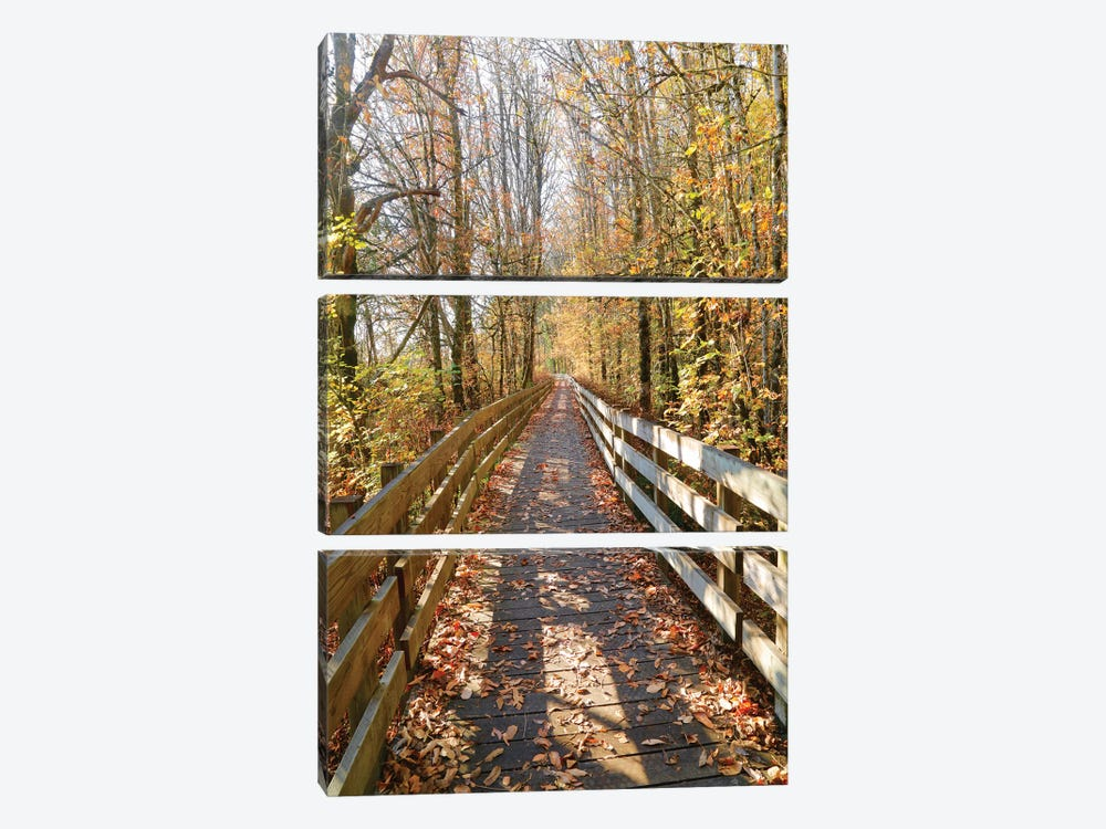 Autumn On The Boardwalk by Susan Vizvary 3-piece Canvas Wall Art