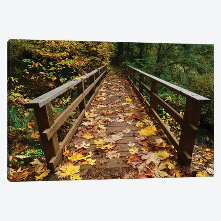 Autumn's Bridge II Canvas Print #SUV172} by Susan Vizvary Canvas Art Print