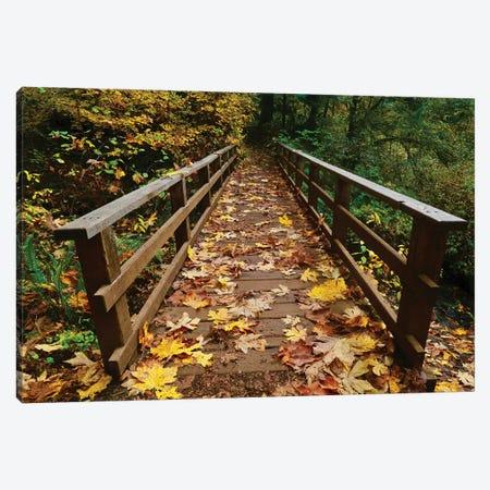 Autumn's Bridge II 3-Piece Canvas #SUV172} by Susan Vizvary Canvas Art Print