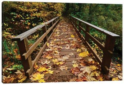 Autumn's Bridge II Canvas Art Print