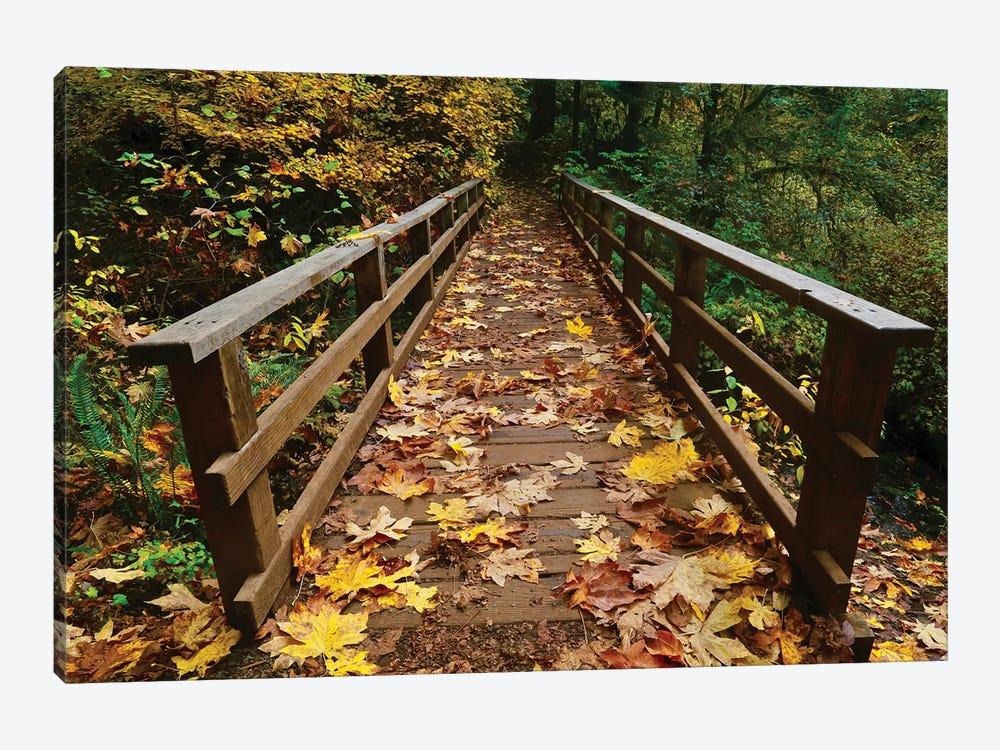 Autumn's Bridge II by Susan Vizvary 1-piece Canvas Art