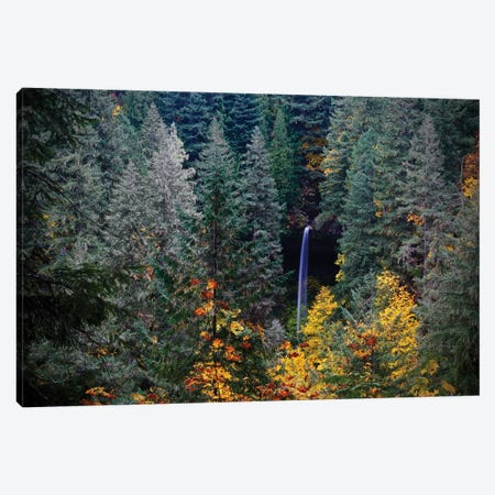 Falls Through The Trees Canvas Print #SUV181} by Susan Vizvary Canvas Art