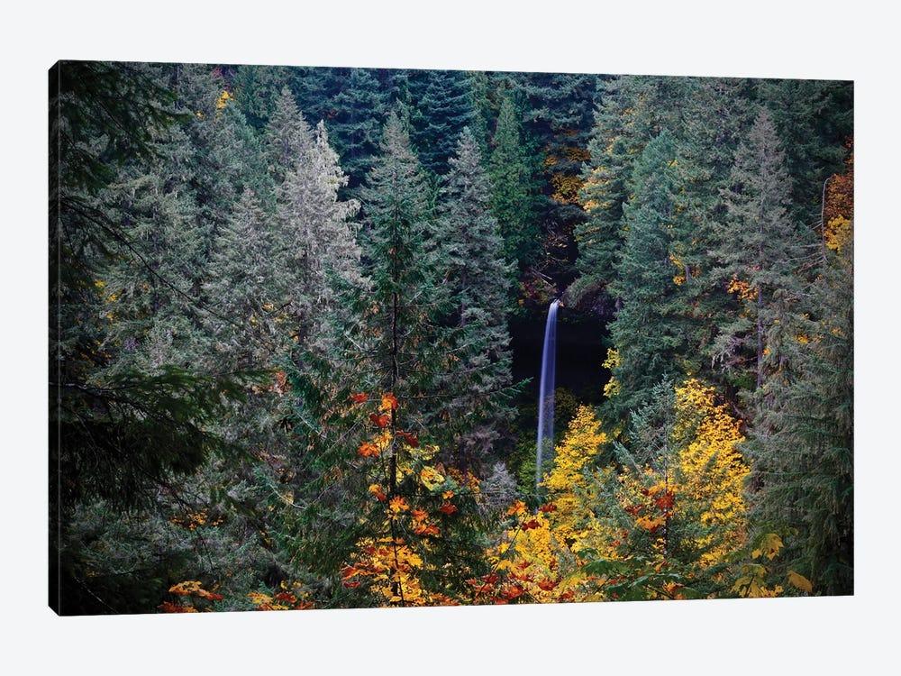 Falls Through The Trees by Susan Vizvary 1-piece Canvas Wall Art