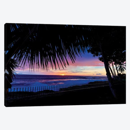 Hawaiian Sunset Palms Canvas Print #SUV183} by Susan Vizvary Canvas Wall Art