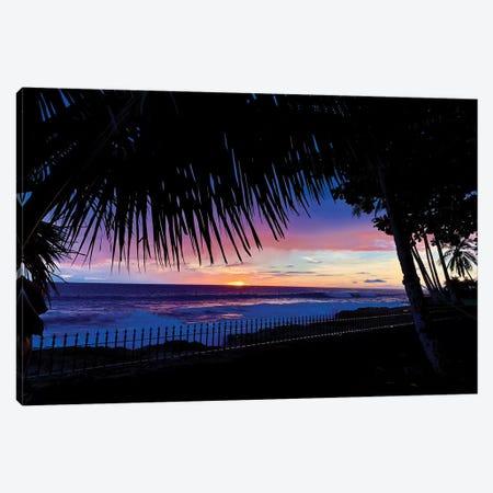 Hawaiian Sunset Palms Canvas Print #SUV183} by Susan Vizvary Canvas Wall Art