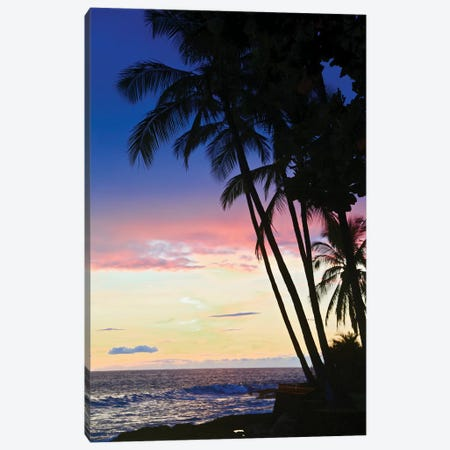Hawaiian Sunset Canvas Print #SUV184} by Susan Vizvary Art Print