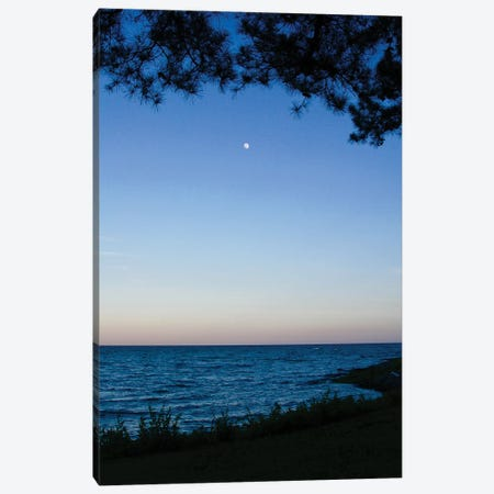 Moon Through The Trees Canvas Print #SUV188} by Susan Vizvary Canvas Wall Art