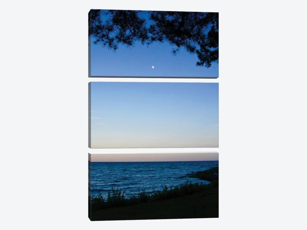 Moon Through The Trees by Susan Vizvary 3-piece Canvas Print