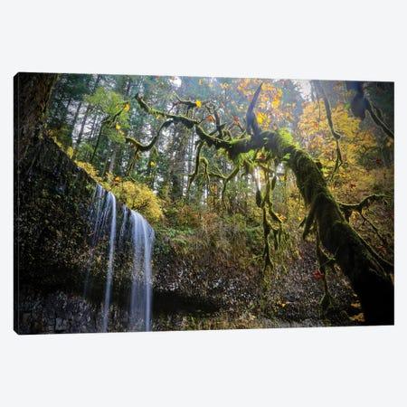 Mystic Falls Canvas Print #SUV189} by Susan Vizvary Canvas Wall Art