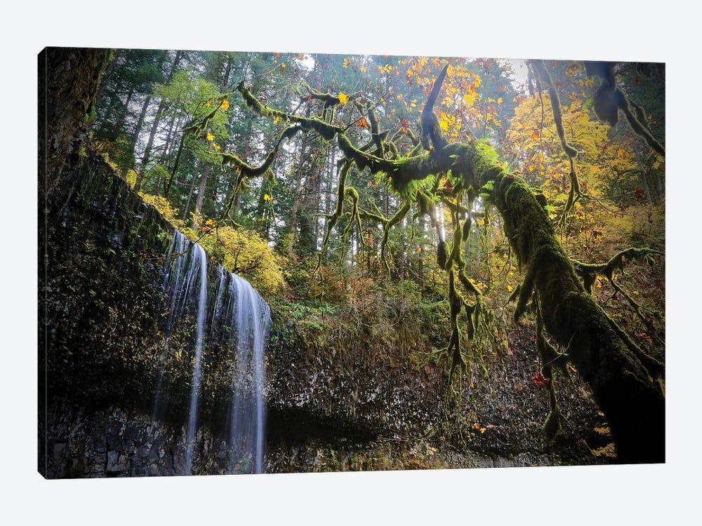 Mystic Falls by Susan Vizvary 1-piece Canvas Artwork
