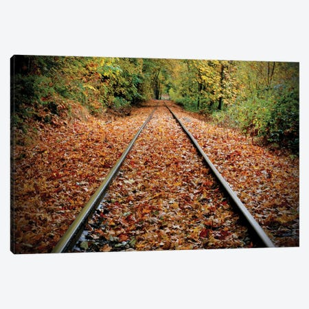 Tracks To Nowhere Canvas Print #SUV193} by Susan Vizvary Canvas Print