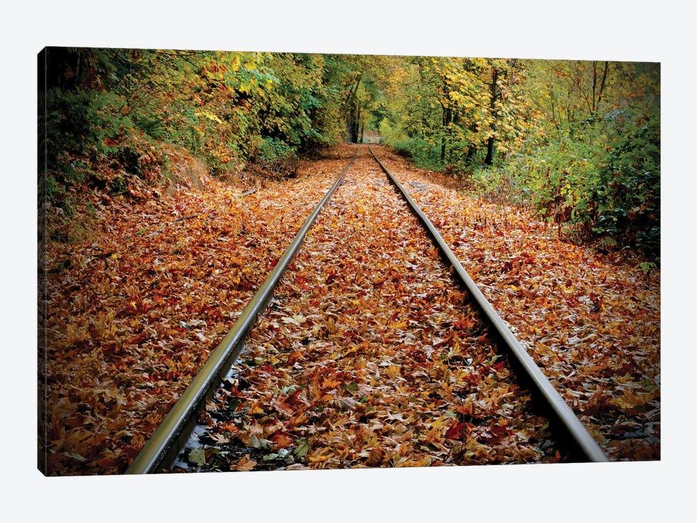 Tracks To Nowhere by Susan Vizvary 1-piece Canvas Print