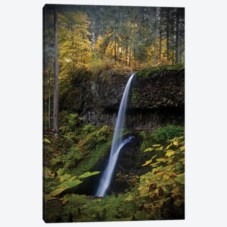 Waterfall Through The Trees II Canvas Print #SUV195} by Susan Vizvary Canvas Artwork