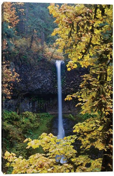 Waterfall Through The Trees I Canvas Art Print