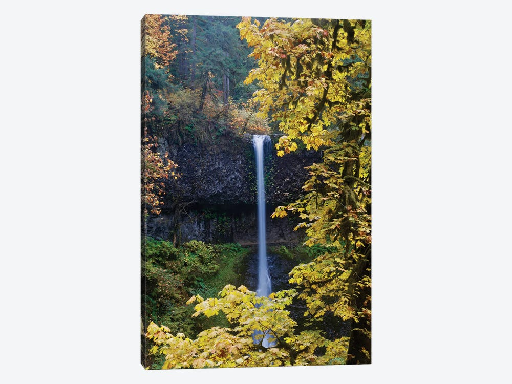Waterfall Through The Trees I by Susan Vizvary 1-piece Canvas Art