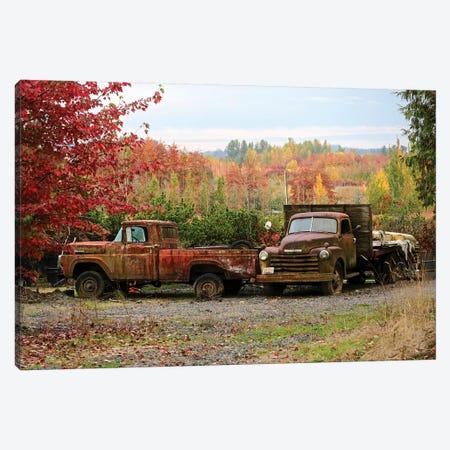 Two Autumn Vintage Trucks Canvas Print #SUV202} by Susan Vizvary Canvas Art Print